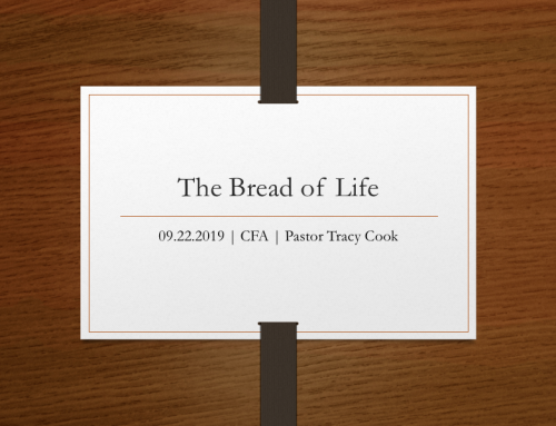Back to the Book- Bread of Life