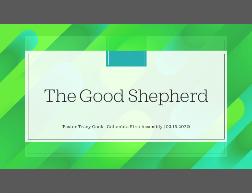 I Am… The Good Shepherd