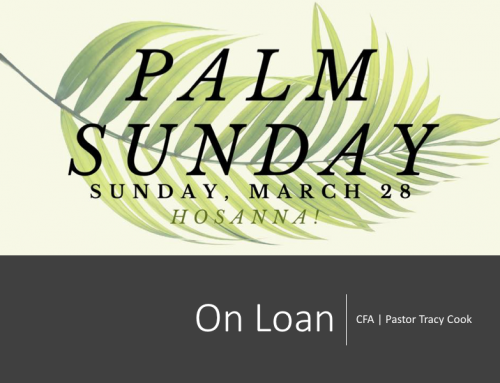 On Loan – Palm Sunday